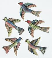 Set 5 colored birds