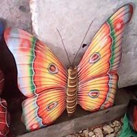 Colored butterfly